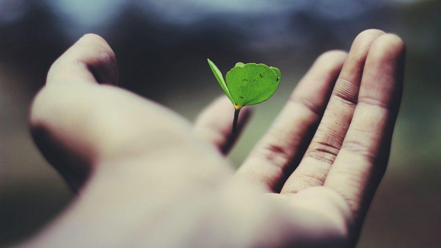 Три стъпки да инвестирате в целенасочен растеж