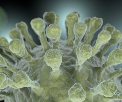 Отслабващият имунитет: Covid-19 и науката за реинфекцията